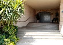 شقة فرصة 600 متر بالروف شارع اللاسلكي المعادي