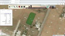 ارض منشية أبوحمور غرب سويت لاند من المالك مباشره
