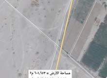 للبيع ارض سكنيه بركاء الدهس قريب المسجد زاويه جاهزه للبناء