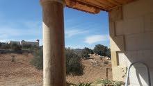 منزل السلط منطقة الحديب.. الزعتري