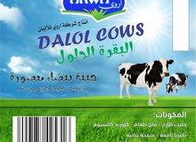 شراء حليب خام غرب طرابلس