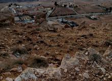 أرض مميزه للبيع في الأردن (مدينة البتراء)