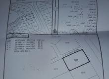 ارض سكنية في العامرات منطقة الحشية