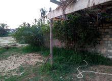 ارض للبيع في ابو صوير