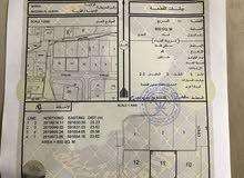 يوجد ارض للبيع في مزرع الحرث جنب مسجد ومجلس عام