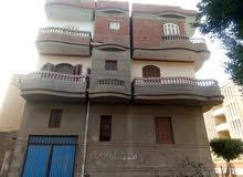 بيت للبيع مكون من ثلاث طوابق مبنى جديد مساحته 225 متر بقريه سجين مركز قطور