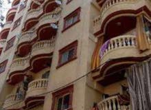 More than 5 apartment for rent - Asafra