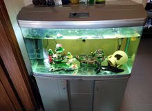 حوض سمك مع خزانه