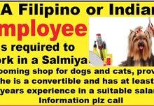 employee for pet shop