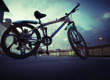 new bike trinx