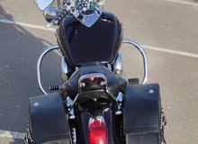 Kawasaki Vulcan1600cc