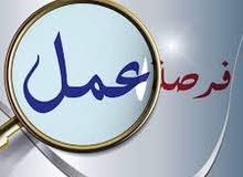 ابحث عن موظفة مصريه