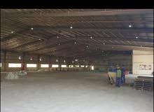 3300 mtr store in industrial