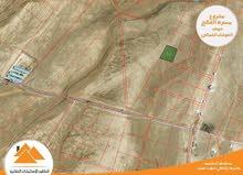 اراض استثمارية في مسترة الفالح جنوب عمان بسعر مغري جداً