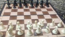 تدريب شطرنج للمبتدئين (مسقط )..