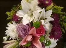 منسق زهور يطلب عمل في مجال الزهور