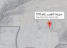 مزرعه بموقع إستراتيجي في ولايه عبري الطيب 14 فدان