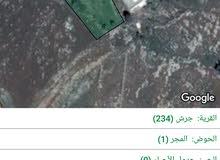 قطعة ارض مساحة 1262 متر سكنيه الجبل الاخضر