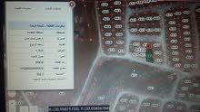 أرض شمال عمان زينات الربوع