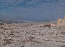 فرصه استثماريه ارض صناعي للبيع 2 دونم ابوعلندا الشرقي البيضه على حد عمان الجديده
