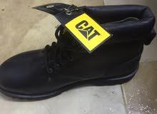 حذاء كتر بلر cat