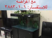 للبيع احواض سمك