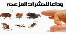 أفضل شركه تنظيف ومكافحه الحشرات