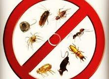 مكافحة الحشرات والصراصير والافات