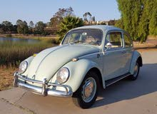 Used Older than 1970 Volkswagen Beetle for sale at best price