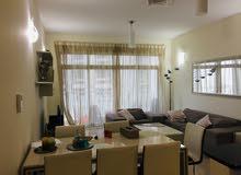 Modern LUXURY Spacious 2 BR Apartment rent#500