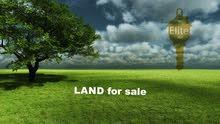 ارض للبيع في الاردن - عمان - بدر الجديده بمساحه 3 دونمات