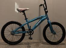 Aerobic bike