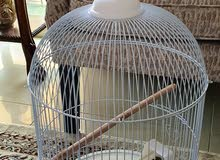 Bird cage used for few times only