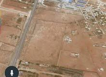 """قطعة أرض نص هكتار في سيدي خليفة طريق """"بوهادي """" قبل بوابة الصاروخ علي اليمين"""