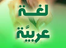 معلم لغة عربية - ذو خبرة طويلة