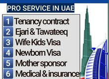 Family Visa (Tenancy Contract)