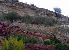 ارض 2 دونم للبيع في بيادر وادي السير حوض الكرسي