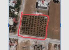 قطعه ارض للبيع على شارعين الكرك العدنانيه
