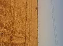 للبيع مزرعة شرق النيل الضريساب