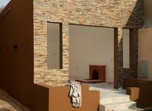 جميع انواع الاصباغ ورق جدران وعوازل الاسطح