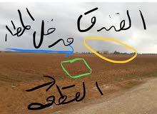 خلف فندق عاليه/مطار الملكه علياء حوض 6 لوحه 22 رقم القطعه 2121
