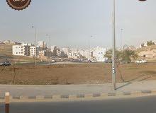 ارض للبيع في منطقة أم نواره (( بلقرب من مدرسة أم هاني )) من المالك مباشرة** حي المعادي **
