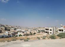 الزرقاء.. شمالي رصيفة / قرب مستشفى الامير فيصل/ سكان الفل وقصور