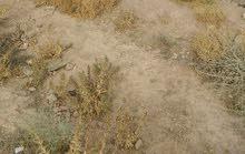 ارض للبيع لبناء فيلال او اقامة مشروع نواحي مراكش