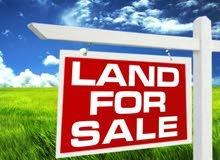 ارض للبيع في الكرك المشيرفة قرب قصر العدل للبيع بسعر مغري جدا