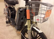 دراجة شحن كهربا سرعة 75 بالكرتونة بسعر منافس