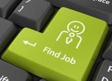 تخصص حاسوب باحث عن عمل
