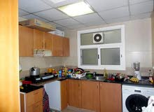 bed space only Indians/wifi,kitchen facility in sharjah