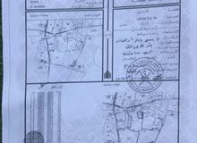 للبيع ارض زراعيه في ولاية بركاء منطقة النعمان
