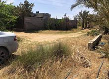 sweet  Dream  land for sale in tajura  خلة الكواتب